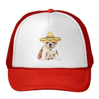 Fiesta Bulldog Cap