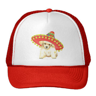 Fiesta Toy Poodle Cap