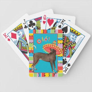 Fiesta Xolo Poker Deck