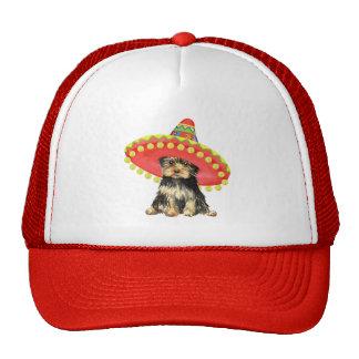 Fiesta Yorkie Mesh Hats
