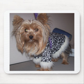 """""""Fifi"""" the Yorkie! Mouse Pad"""