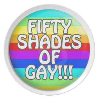 FIFTY SHADES OF GAY MULTI SHADE PARTY PLATE
