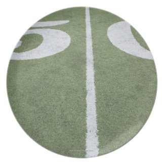 Fifty yard line on sports field plate