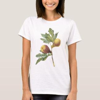 fig(Ficus violacea) by Redouté T-Shirt