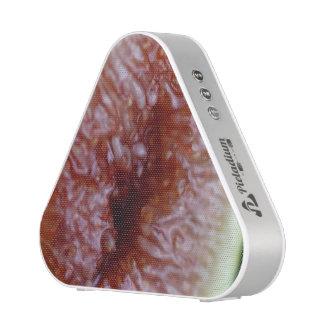 Fig Inside Bluetooth Speaker