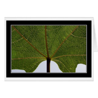 """Fig Leaf"" Card"