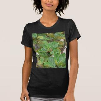 Fig Tree T Shirt