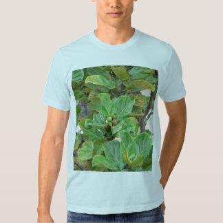 Fig Tree Tshirt