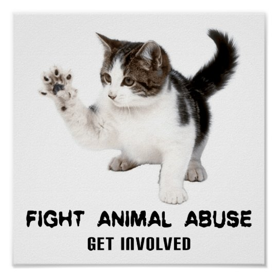 FIGHT ANIMAL ABUSE KITTEN POSTER