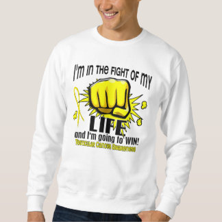 Fight Of My Life 2 Testicular Cancer Pullover Sweatshirts