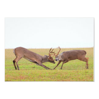 Fighting Deer Invitation