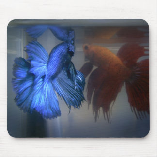 Fighting Fish Mouse Mat