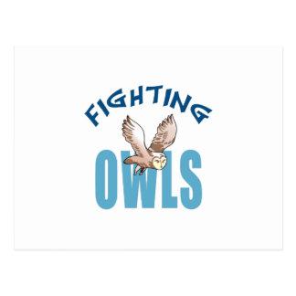 FIGHTING OWLS POSTCARD
