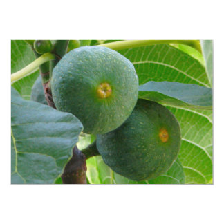 Figs Card