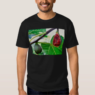 figs on the tree shirt