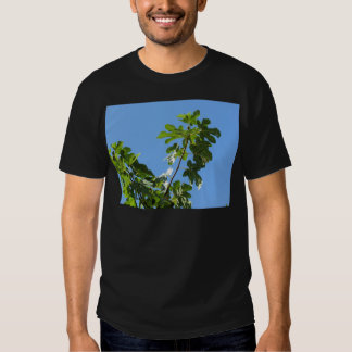Figs on tree branches t shirts