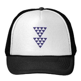 Figure of triangles shape triangles mesh hats