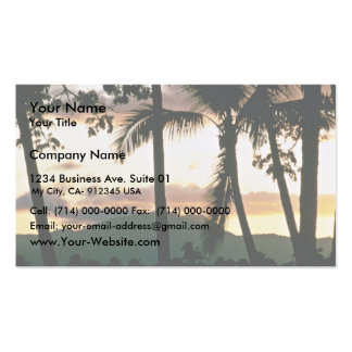 FiJi Sunset Pack Of Standard Business Cards