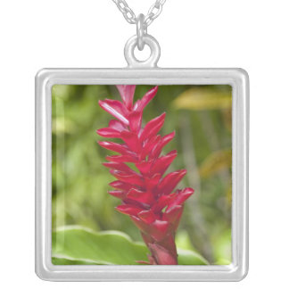 Fiji, Viti Levu Island. Flower. Silver Plated Necklace