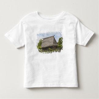Fiji, Viti Levu Island. Polynesian Cultural Tee Shirt