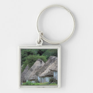 Fiji, Viti, Traditional hut houses. Key Ring