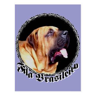 Fila Brasileiro Dog Postcard