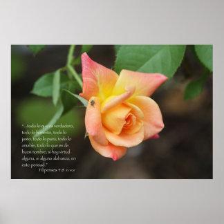 Filipenses 4:8 con rosa print