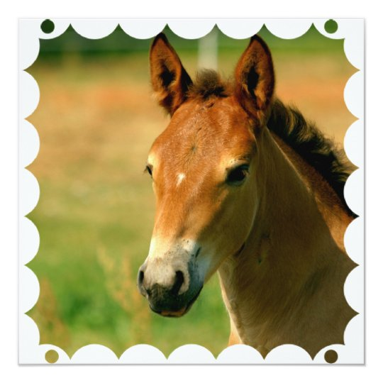 Filly Horse Invitation