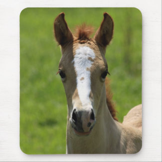 Filly Mouse Pad