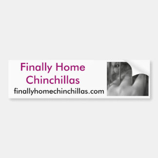 Finally Home Chinchillas, Chilli Bumper Sticker