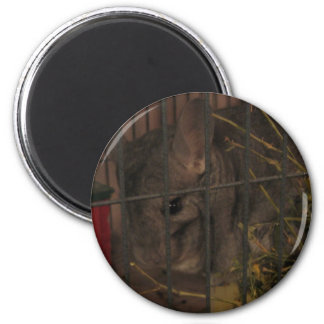 Finally Home Chinchillas: Lilith 6 Cm Round Magnet
