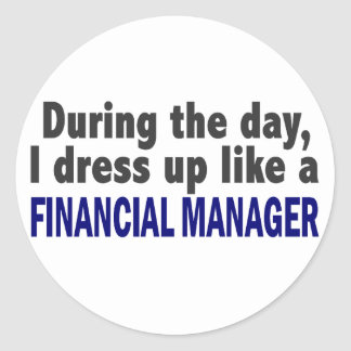 Financial Manager During The Day Stickers