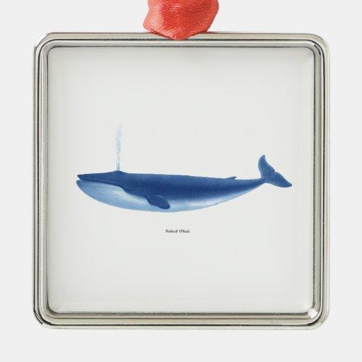 Finback Whale no. 4 Marine Mammal Nautical Decor Christmas Tree Ornaments