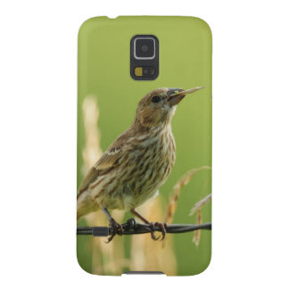 Finch eating seeds of a wild grass galaxy s5 case