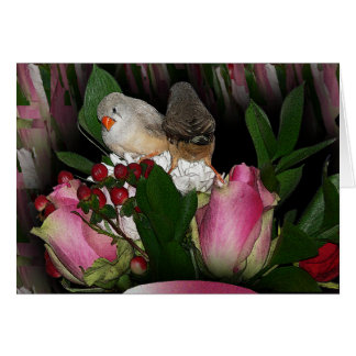 Finches Card 2