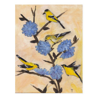 Finches on Chicory Postcard