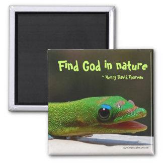 Find God in nature Magnet