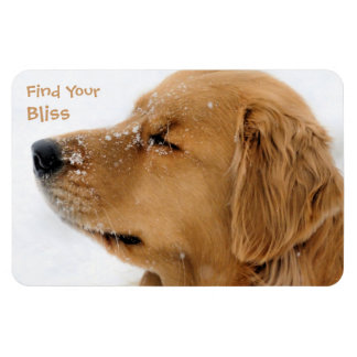Find Your Bliss Golden Retriever Rectangular Photo Magnet
