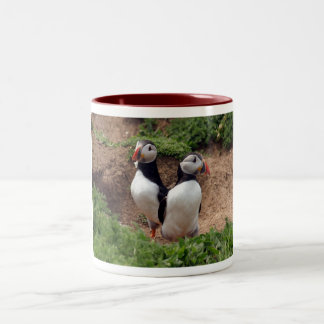 Find your perfect match puffin mug