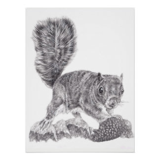 Finders Keepers Squirrel Poster