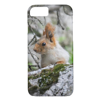 Finding Squirrels in Kyrgyzstan: Cute Animal Photo iPhone 8/7 Case