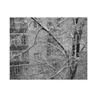 Fine Art Black & White photograph Berlin Window Gallery Wrapped Canvas