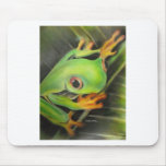 fine art green frog mouse pads