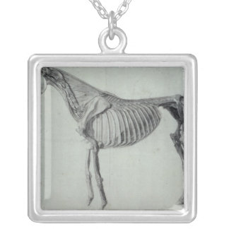 Finished Study for the Fifth Anatomical Table Silver Plated Necklace