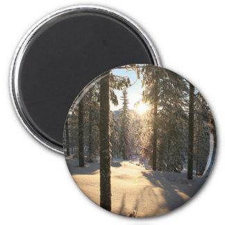 Finnisch Forest Magnet