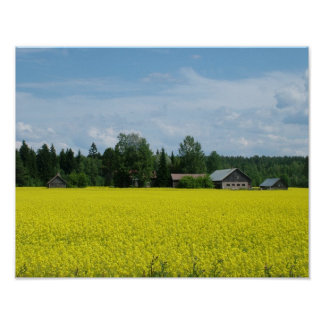 Finnish Countryside poster