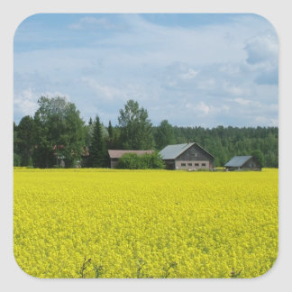 Finnish Countryside stickers