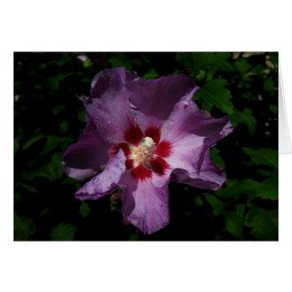 Finnish-Hyvää Syntymäpäivää-purple flower Card