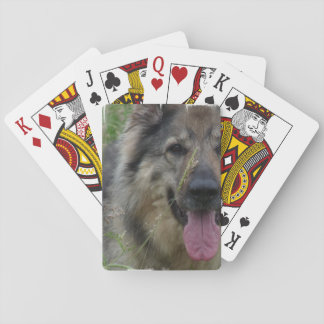 Finnish Lapphund Dog Card Decks
