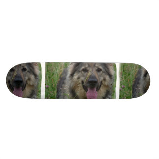 Finnish Lapphund Skateboard